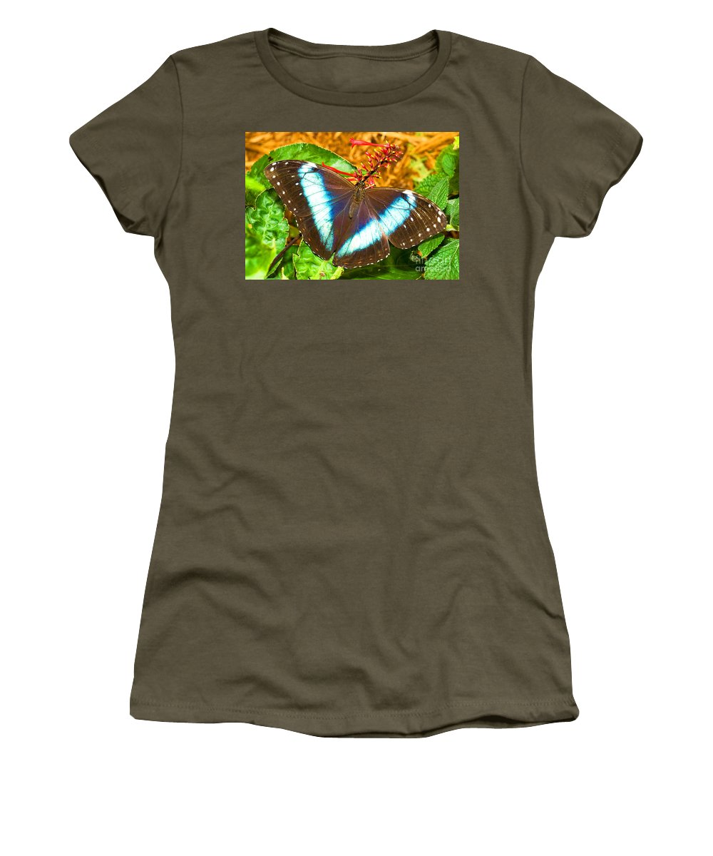 Tropical Butterfly Women's T-Shirt featuring the photograph Banded Morpho Butterfly by Millard H. Sharp