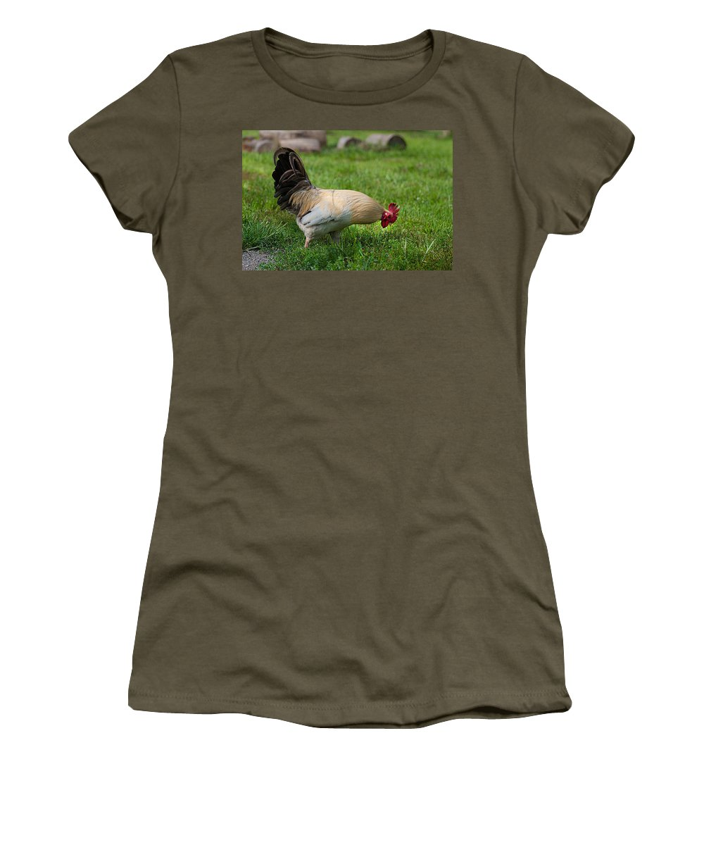 Rooster Women's T-Shirt featuring the photograph Barnyard Rooster 2 by Photos By Cassandra