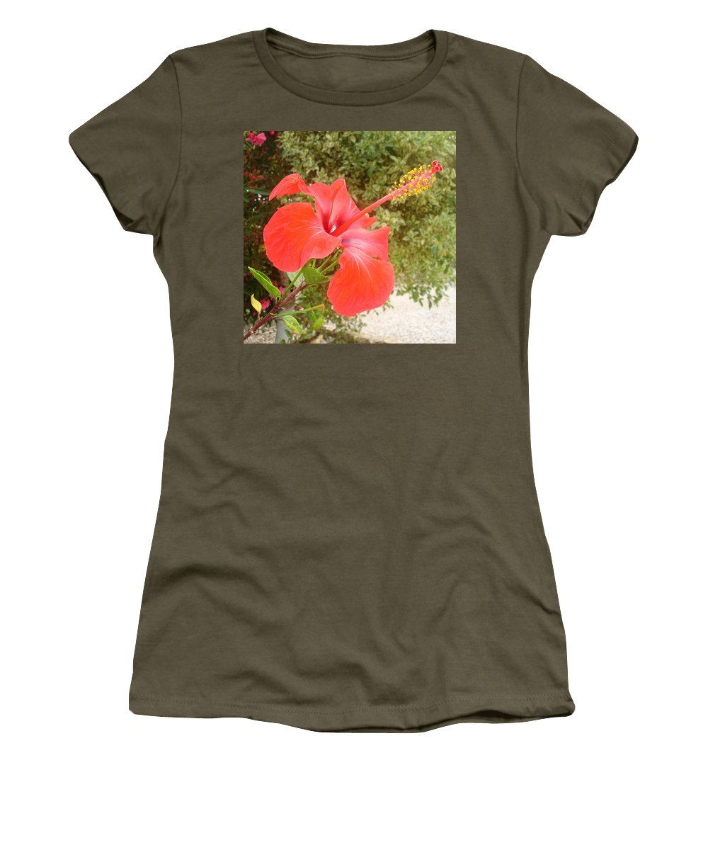 Hibiscus Women's T-Shirt featuring the photograph Beautiful Red Hibiscus Flower With Garden Background by Taiche Acrylic Art