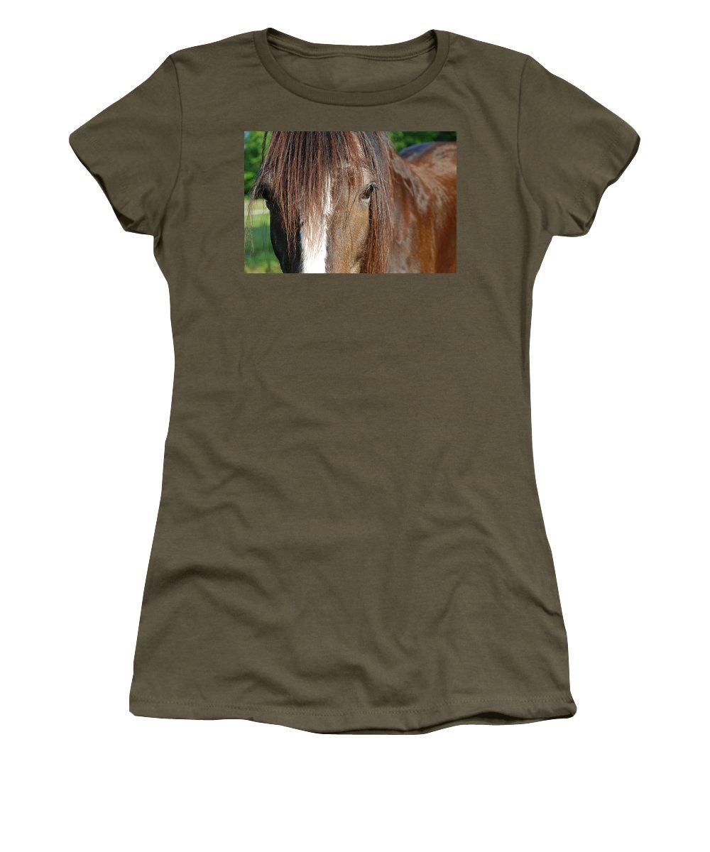 Shire Women's T-Shirt featuring the photograph Beautiful Shire by Jennifer Ancker