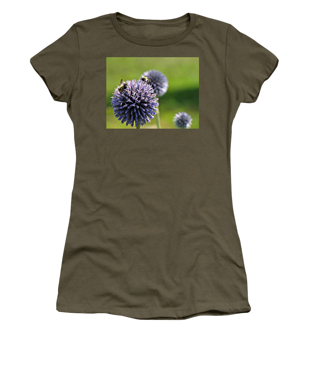 Bumblebees Women's T-Shirt featuring the photograph Bees On Globes by MTBobbins Photography