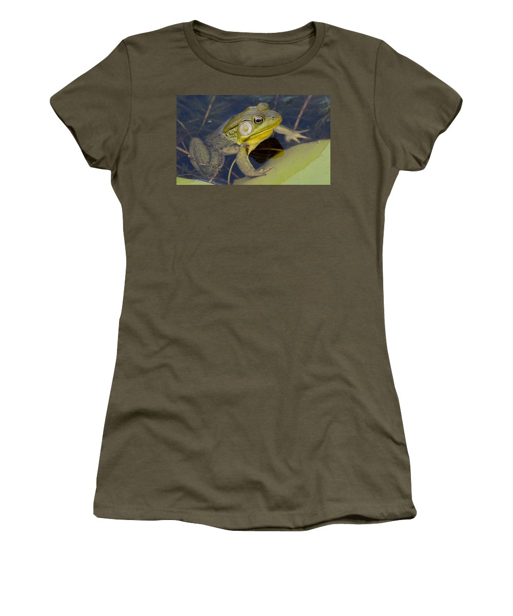 Bullfrog Women's T-Shirt (Athletic Fit) featuring the photograph Big Bull by Ian Ashbaugh