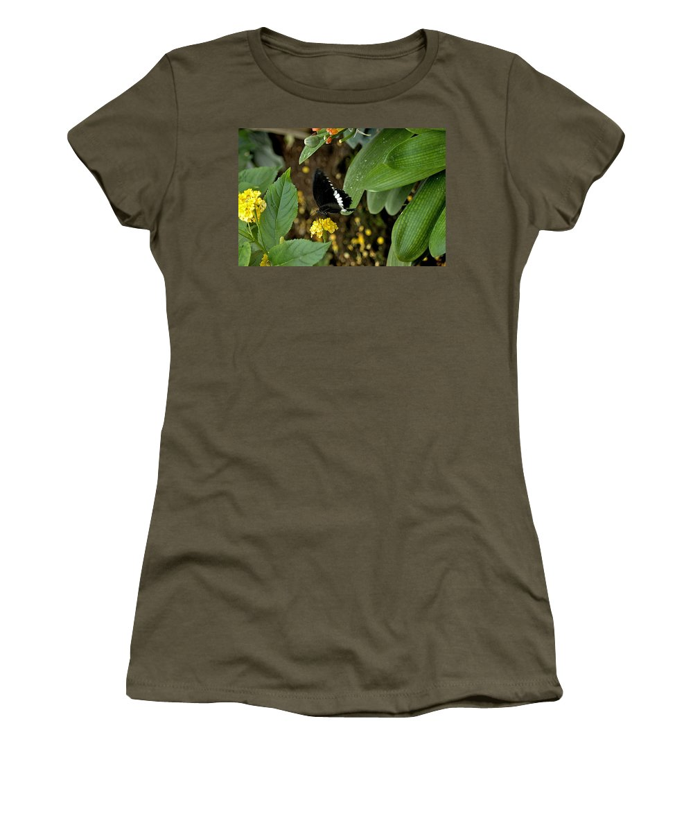 Black Butterfly Women's T-Shirt featuring the photograph Black And White by Joseph Yarbrough