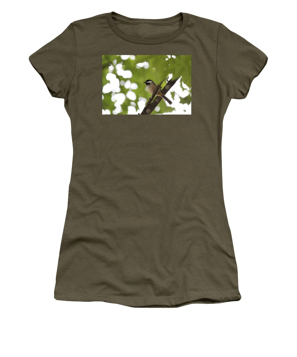 Black-capped Chickadee Women's T-Shirt featuring the photograph A Ray Of Hope by Jennifer E Doll
