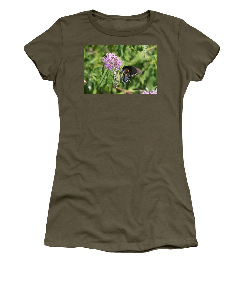 Sooc Women's T-Shirt featuring the photograph Black Swallowtail by Ericamaxine Price