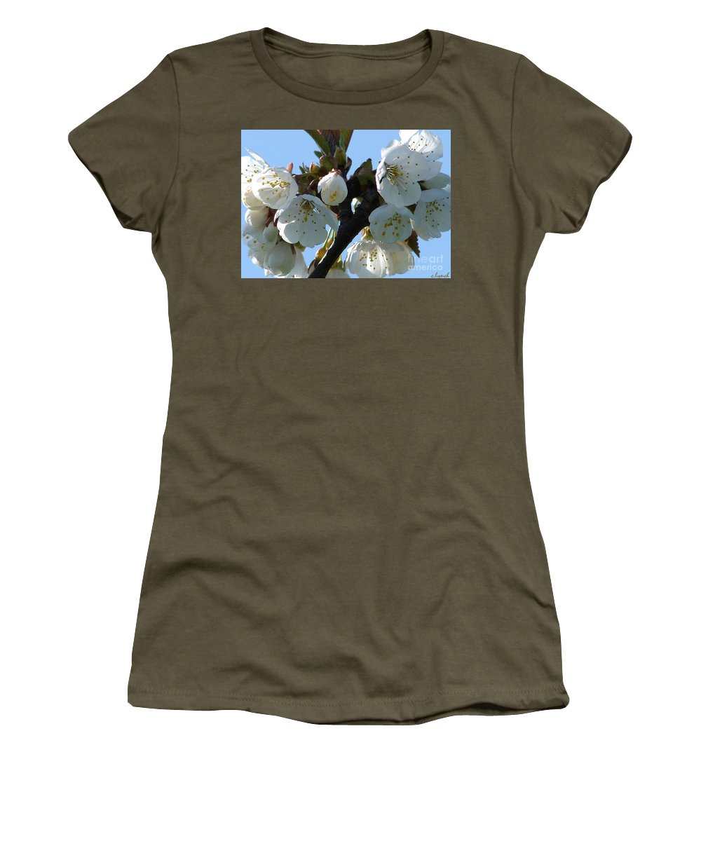 Blossoms Women's T-Shirt featuring the photograph Blossoms 3 by Carol Lynch