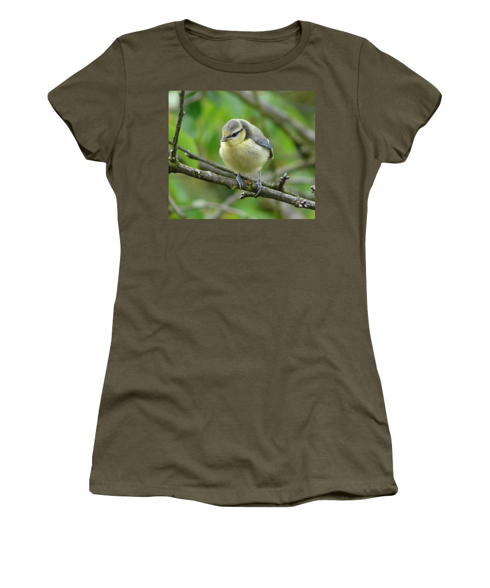 Bird Women's T-Shirt (Athletic Fit) featuring the photograph Blue Tit In A Cherry Tree by Valerie Ornstein