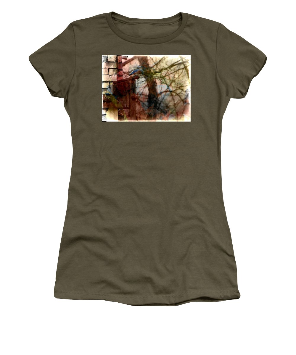 Photo Women's T-Shirt featuring the photograph Bluebird Home by Ericamaxine Price