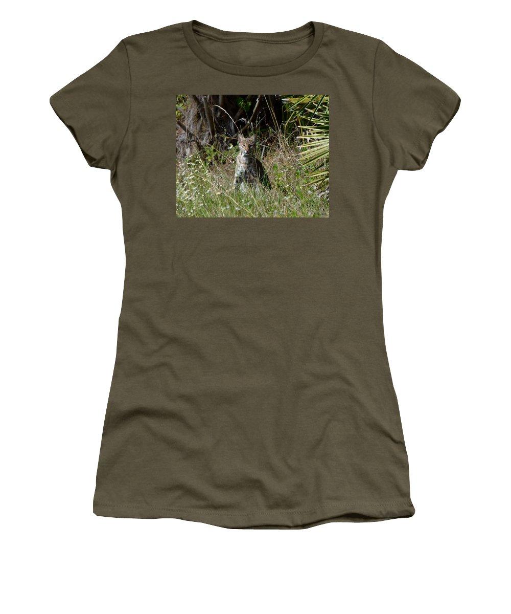Wild Bobcat Women's T-Shirt featuring the photograph Bobcat On The Prowl by Patricia Twardzik