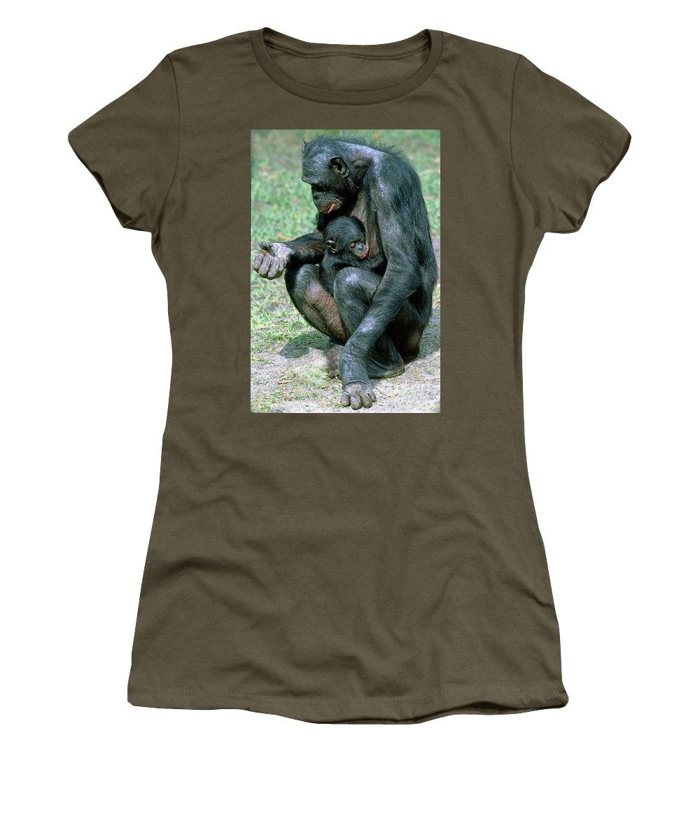 Fauna Women's T-Shirt featuring the photograph Bonobo Pan Paniscus Nursing by Millard H. Sharp