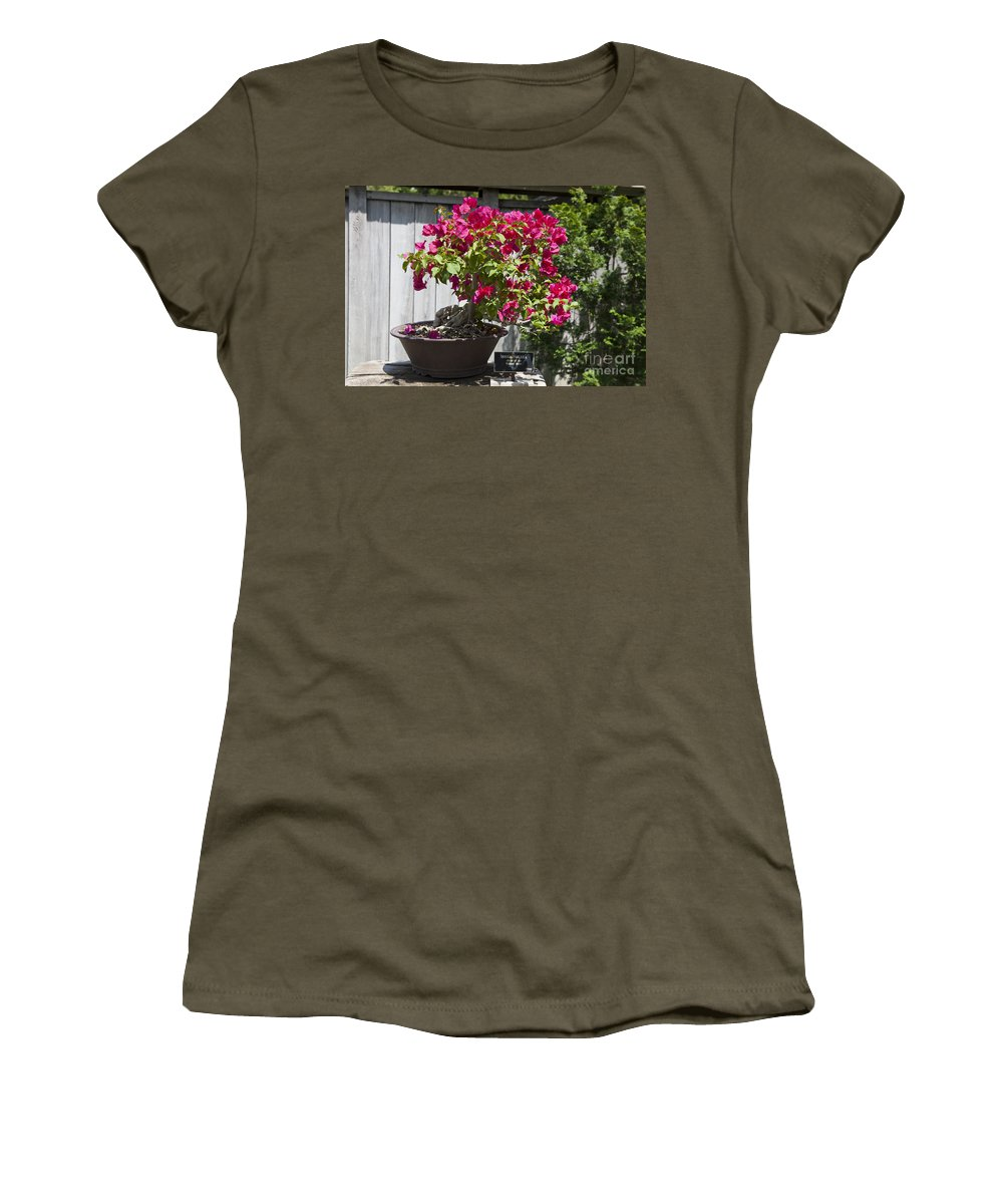 Bonsai Tree Women's T-Shirt featuring the photograph Bougainvillea Bonsai Tree by Jason O Watson