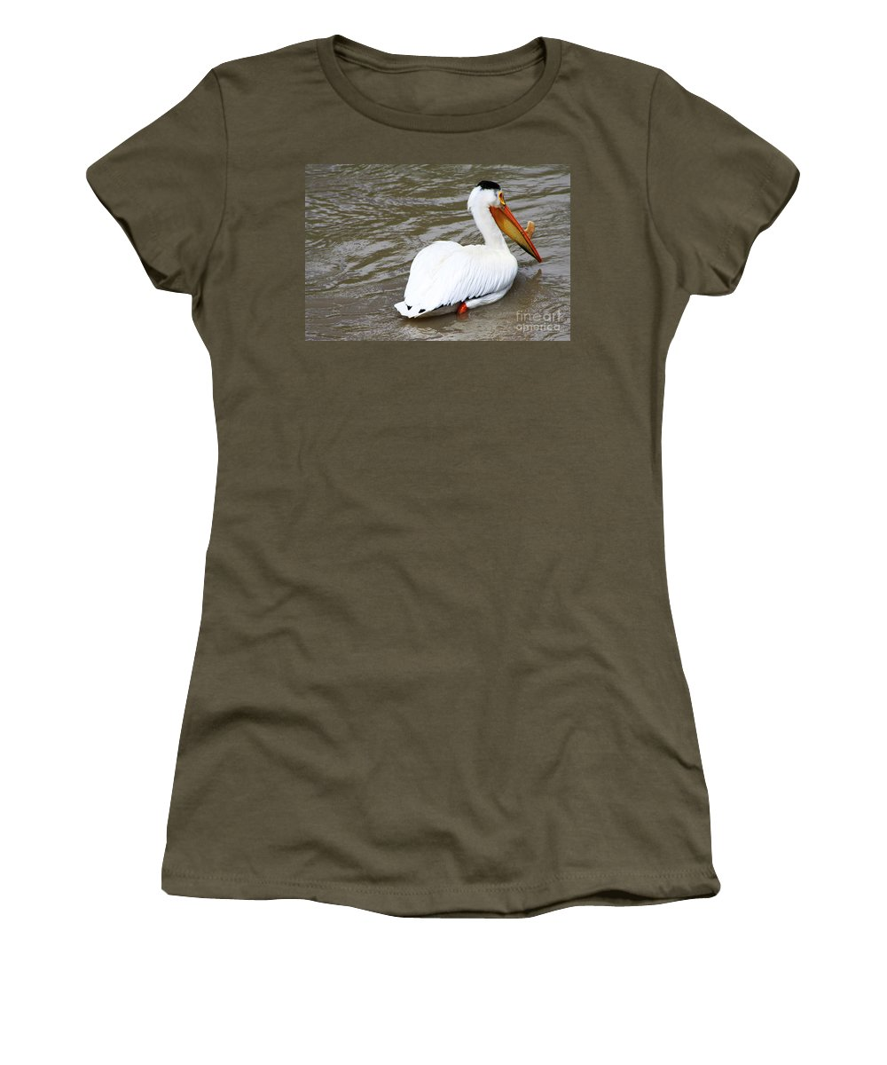Bird Women's T-Shirt featuring the photograph Breeding Plumage by Alyce Taylor