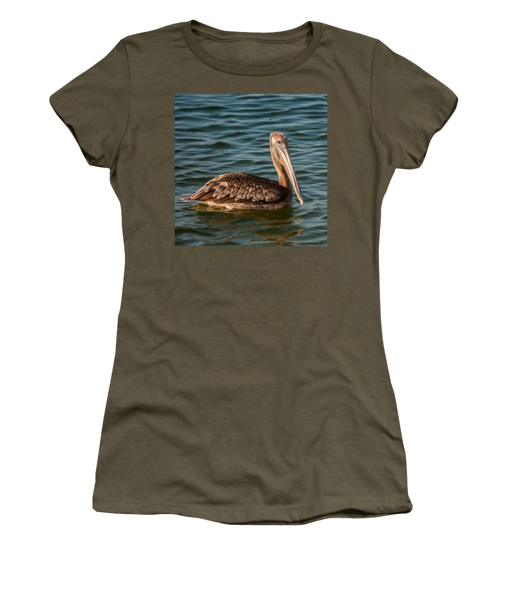 American Women's T-Shirt featuring the photograph Brown Pelican by Alex Grichenko