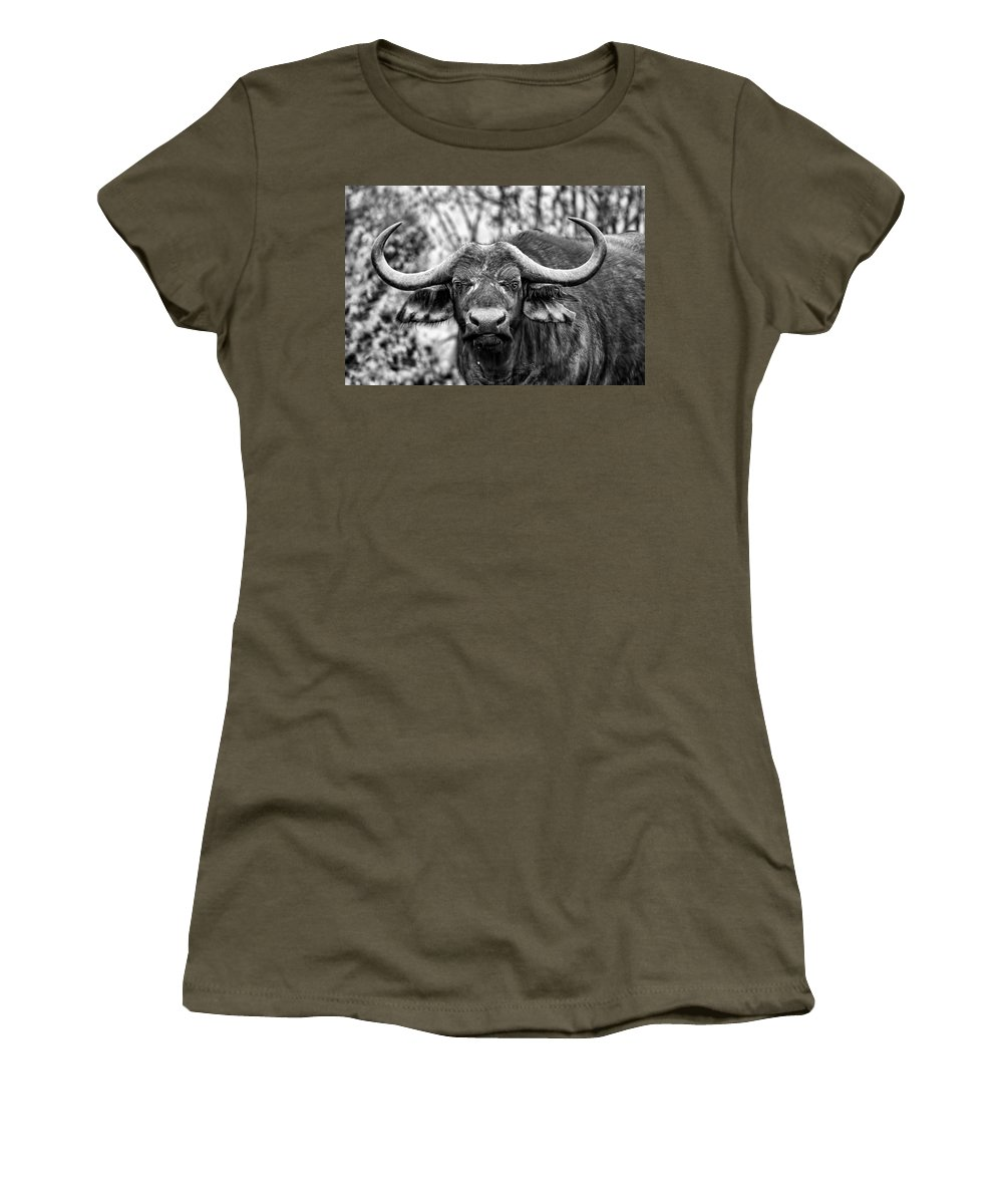 Buffalo Women's T-Shirt featuring the photograph Buffalo Stare In Black And White by Amanda Stadther