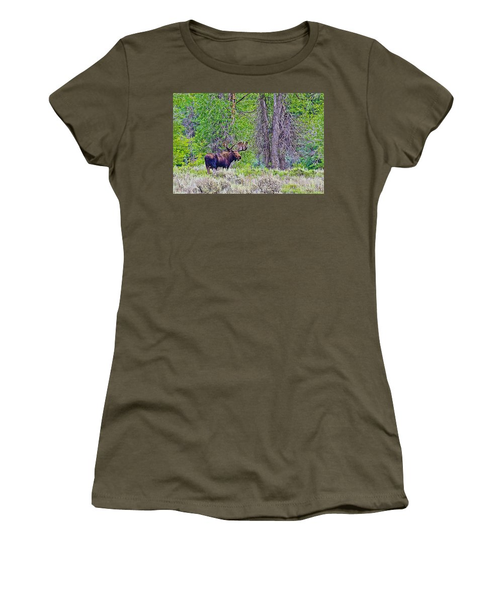Bull Moose In Gros Ventre Campground In Grand Teton National Park Women's T-Shirt featuring the photograph Bull Moose In Gros Ventre Campground In Grand Tetons National Park-wyoming by Ruth Hager