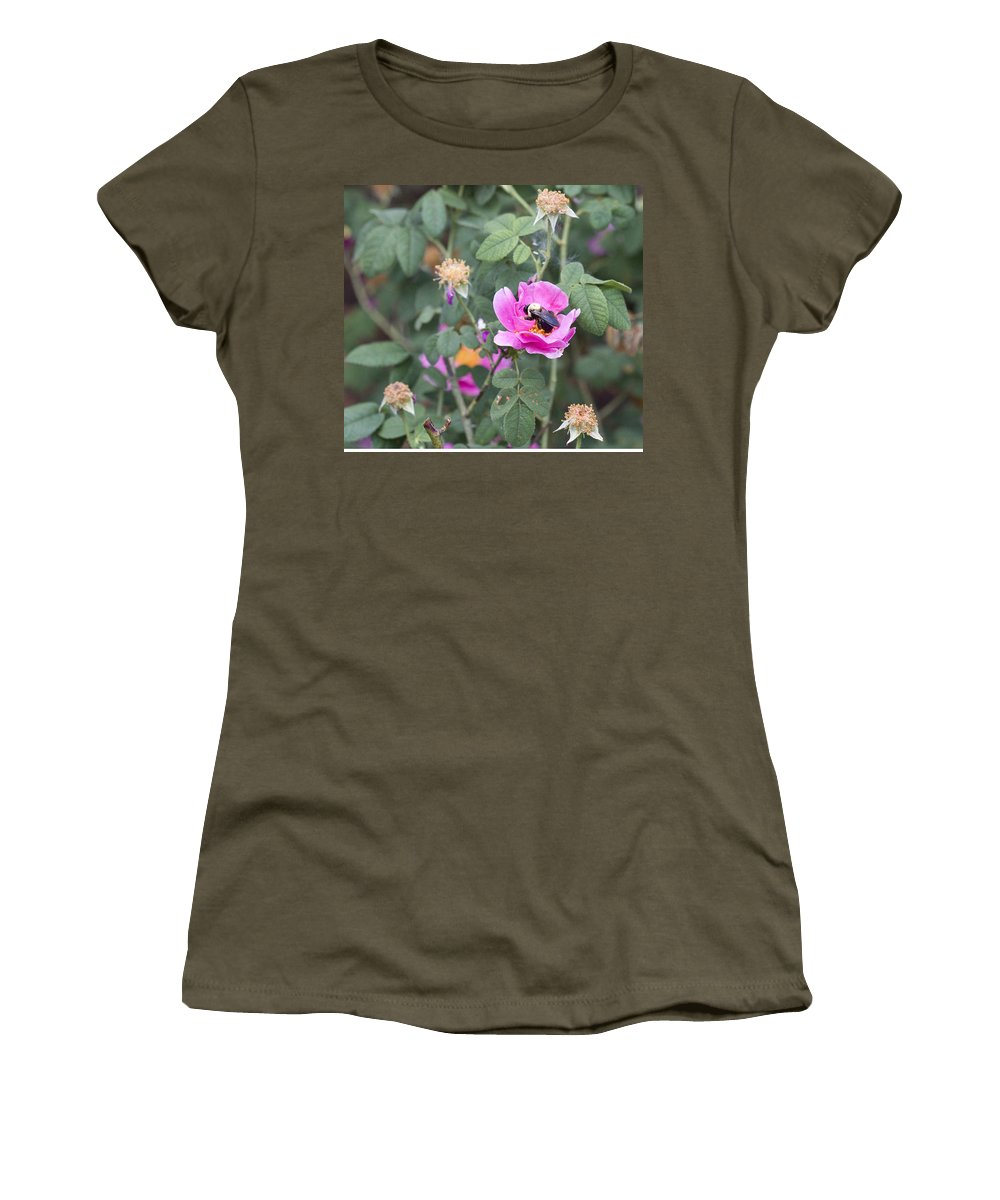 Rose Photographs Women's T-Shirt featuring the photograph Busy In The Morning by Vernis Maxwell