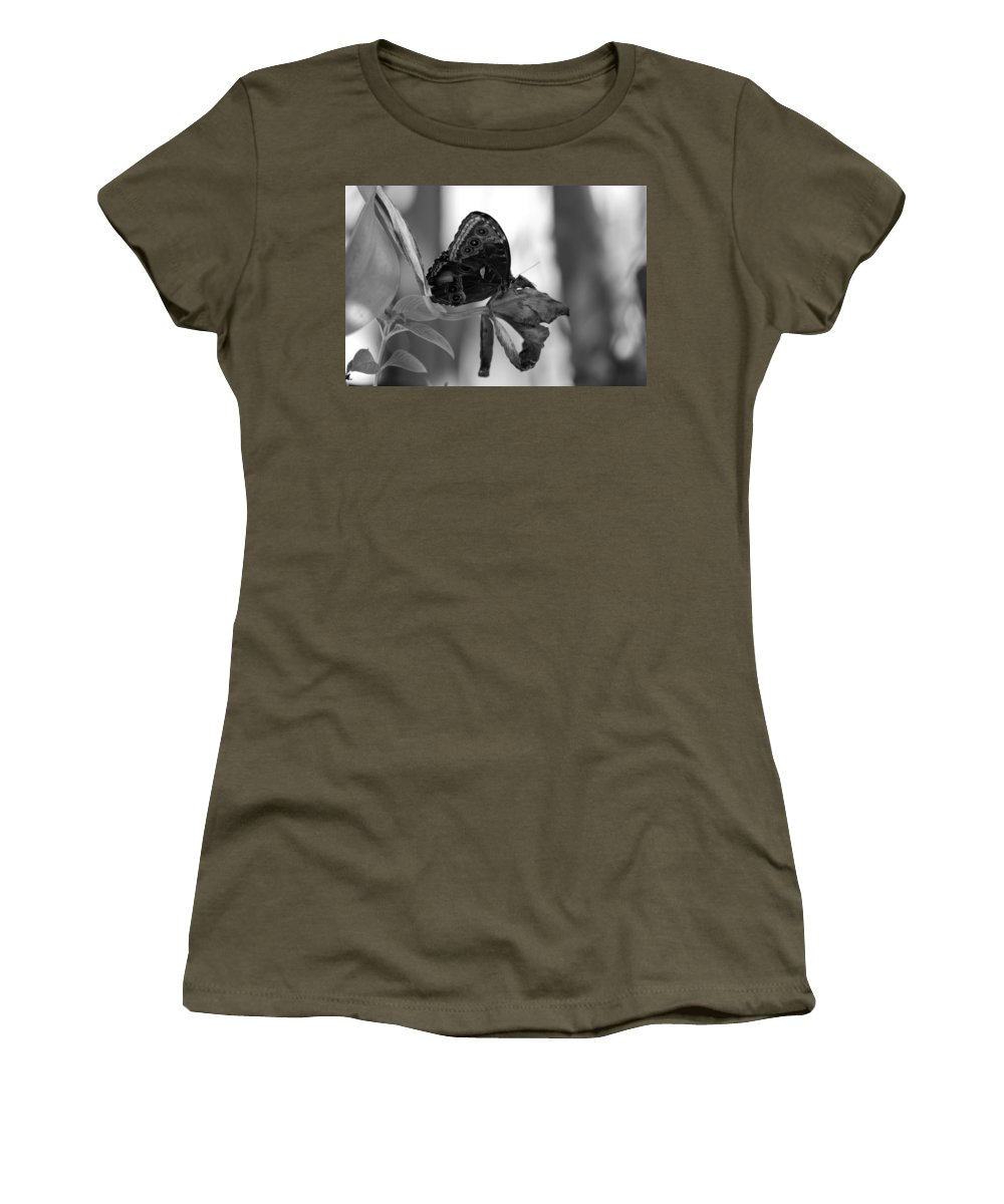 Lepidopterology Women's T-Shirt featuring the photograph Butterfly 4 by Rob Hans