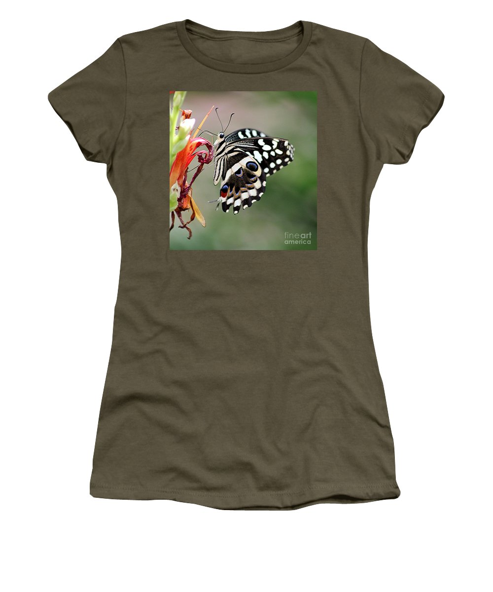 Butterfly Women's T-Shirt featuring the photograph Butterly by Diane Greco-Lesser
