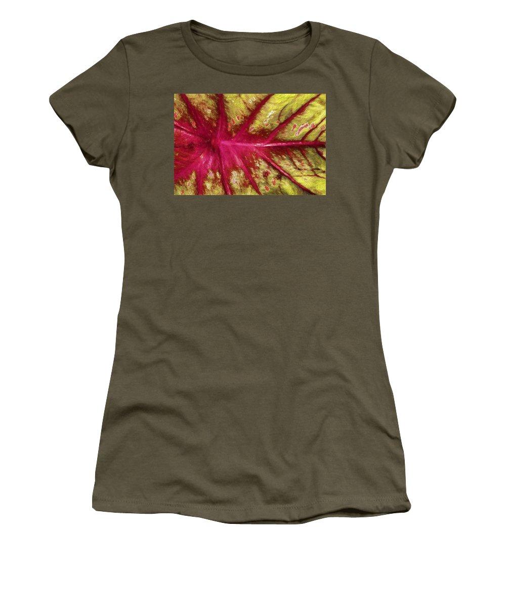 Caladium Women's T-Shirt featuring the photograph Caladium Leaf by HH Photography of Florida