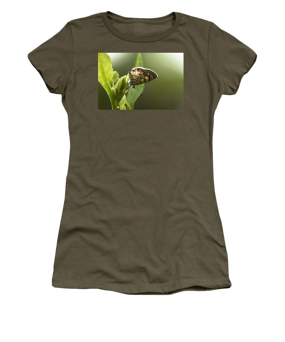 Floral Women's T-Shirt featuring the photograph Cassius On Plumbago by Greg Allore