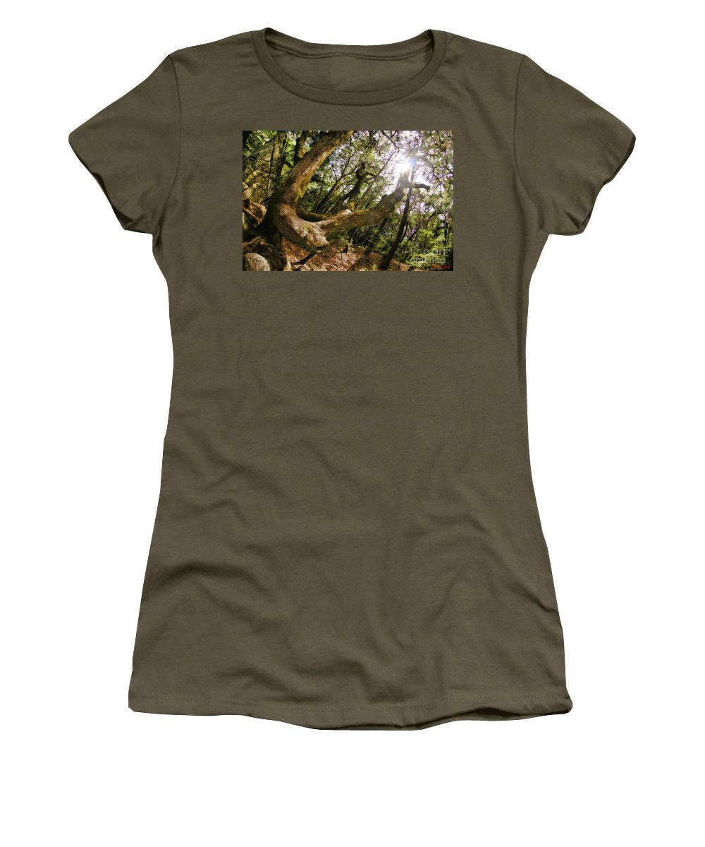 Castle Rock State Park Women's T-Shirt featuring the photograph Castle Rock State Park Branch To The Sun by Blake Richards