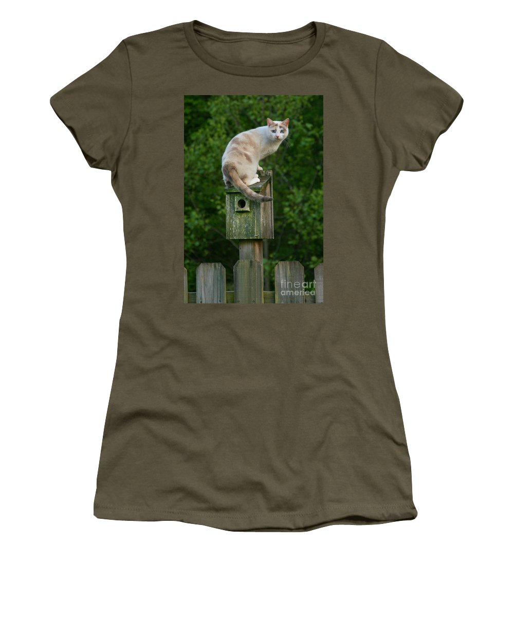 Cat Women's T-Shirt featuring the photograph Cat Perched On A Bird House by Jt PhotoDesign