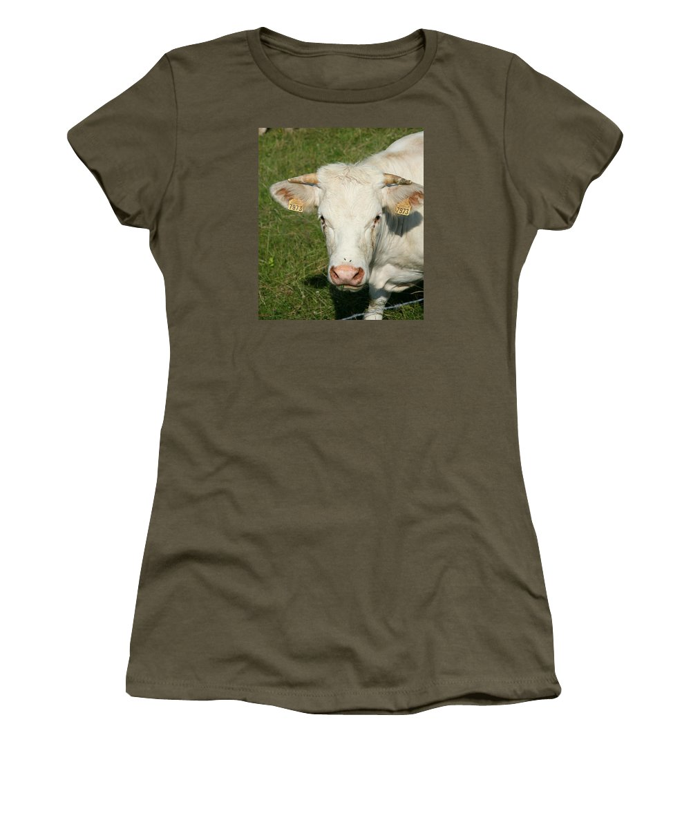 Cow Women's T-Shirt (Athletic Fit) featuring the photograph Charolais Cow by Christiane Schulze Art And Photography