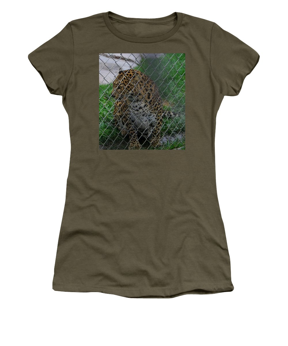 Christmas Women's T-Shirt featuring the photograph Christmas Leopard I by Phyllis Spoor