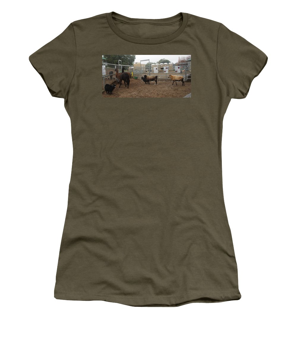 Christmas Women's T-Shirt featuring the photograph Christmas Petting Farm by Phyllis Spoor