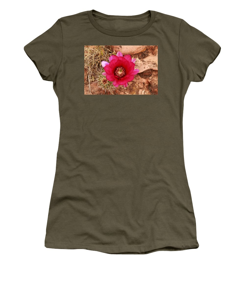 Cactus Women's T-Shirt featuring the photograph Claret Cup Cactus On Red Rock In Sedona by Alan Vance Ley