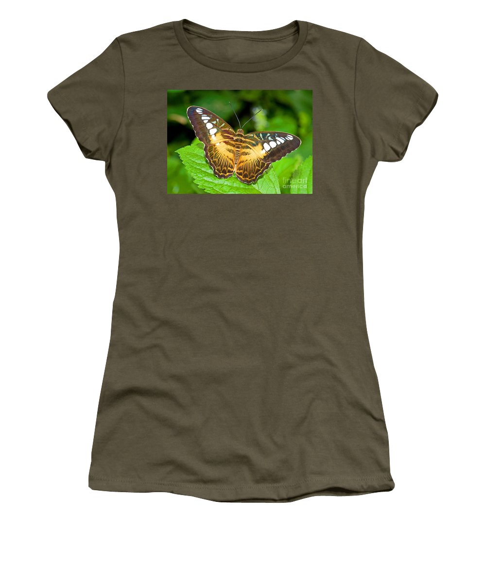 Animal Women's T-Shirt featuring the photograph Clipper Butterfly Parthenos Sylvia by Millard H. Sharp