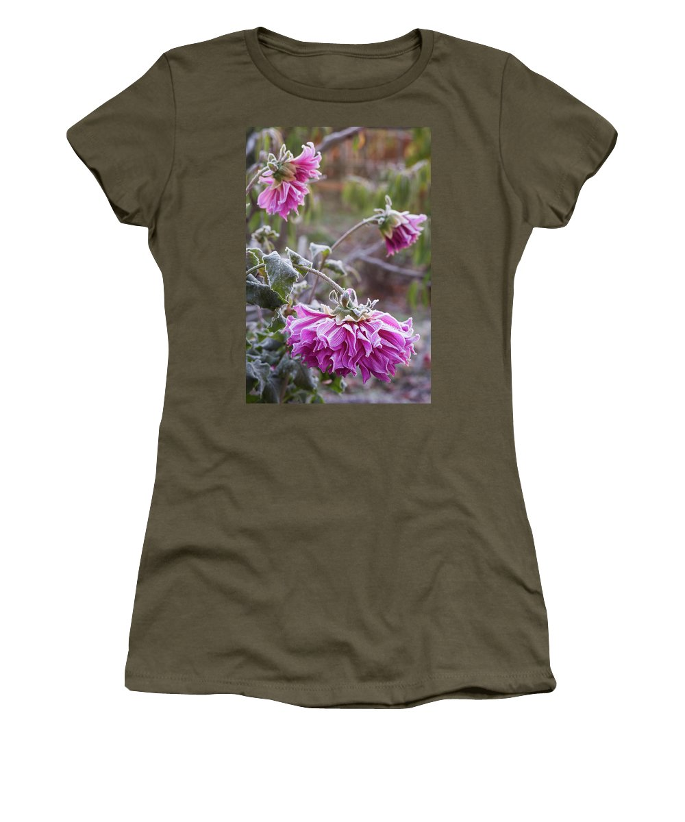 Photography Women's T-Shirt featuring the photograph Close-up Of Flowers Covered By Frost by Panoramic Images