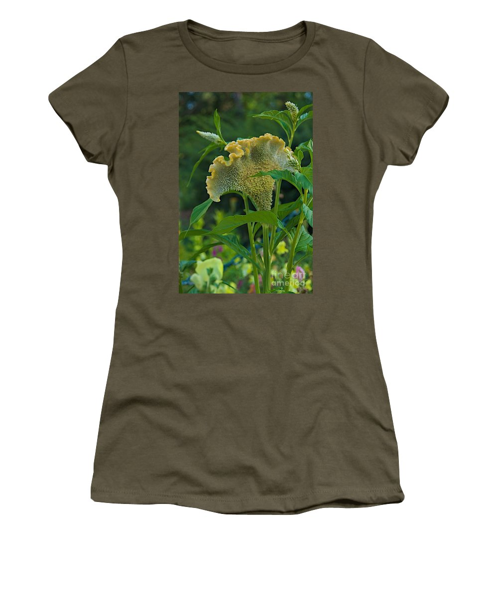 Celosia Women's T-Shirt featuring the photograph Cockscomb by Joseph Yarbrough