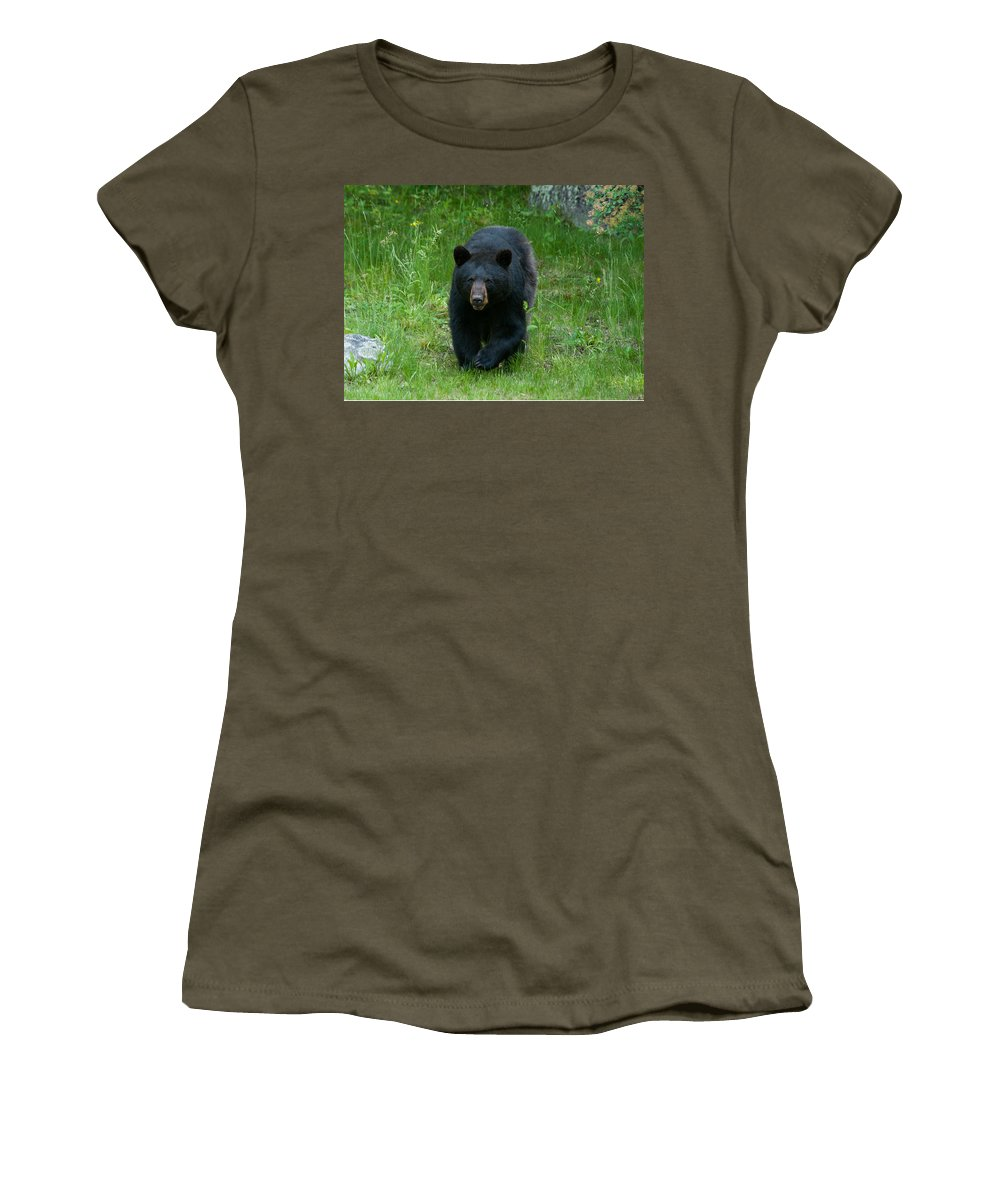 Bears Women's T-Shirt featuring the photograph Coming At Ya by Brenda Jacobs