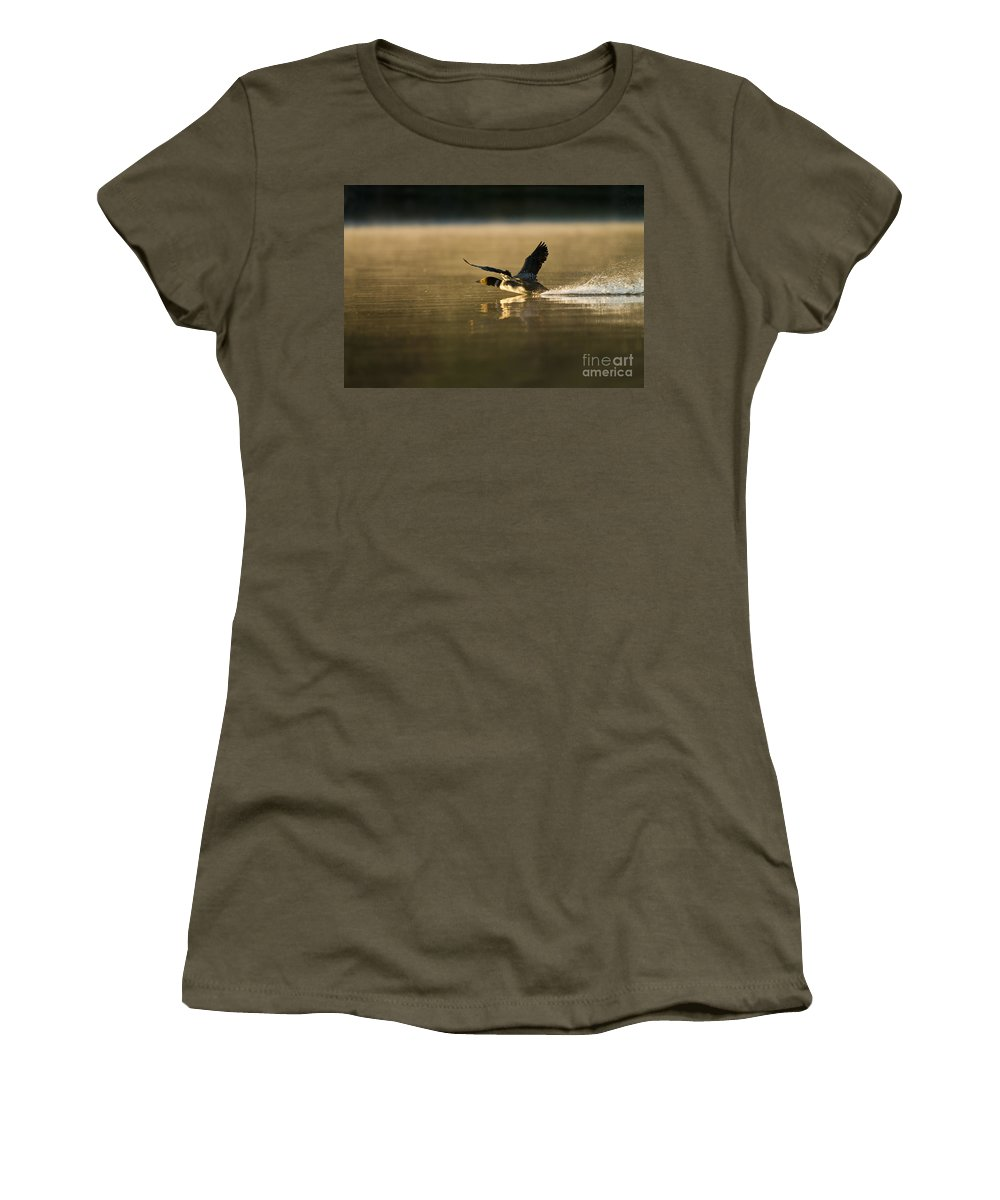Common Loon Women's T-Shirt featuring the photograph Common Loon Pictures 147 by World Wildlife Photography