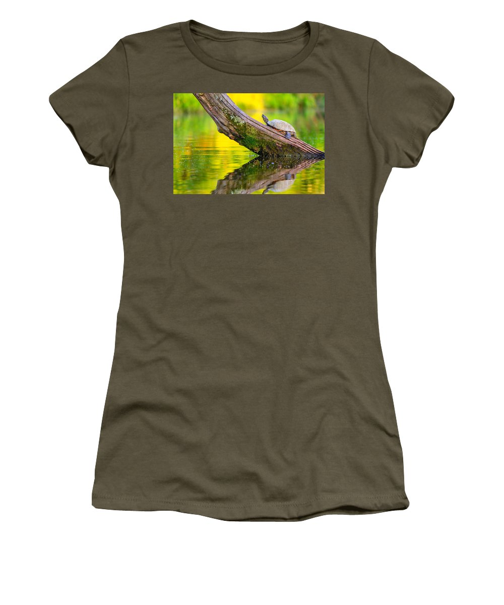 Turtle Women's T-Shirt featuring the photograph Common Map Turtle by Alexey Stiop