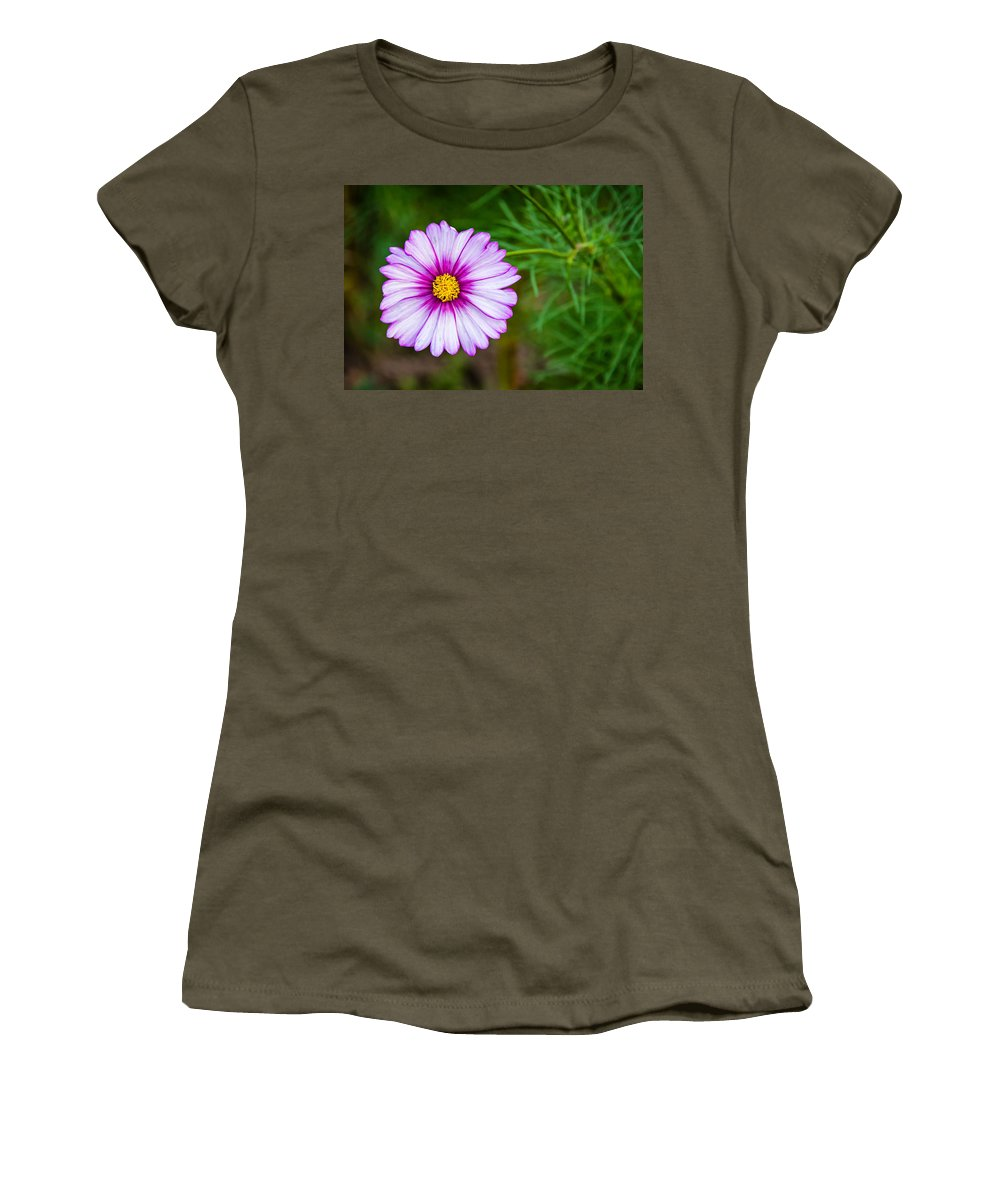 Steve Harrington Women's T-Shirt featuring the photograph Cosmos by Steve Harrington