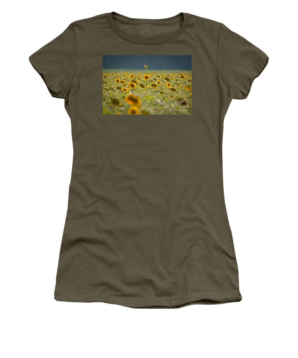 Sunflowers Women's T-Shirt featuring the photograph Country Sunflowers by Cheryl Baxter