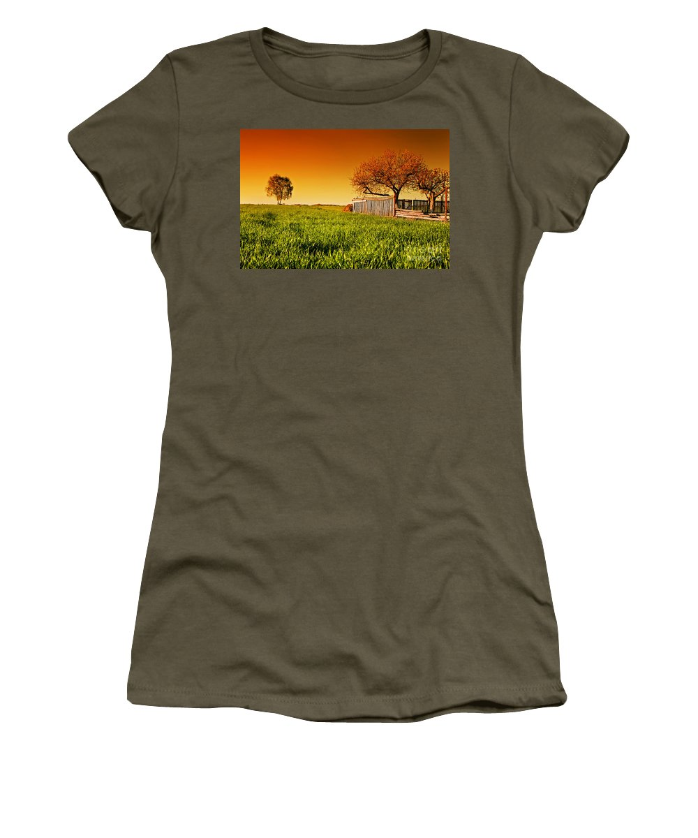Field Women's T-Shirt featuring the photograph Countryside Orchard Landscape At Sunset. Spring Time by Michal Bednarek