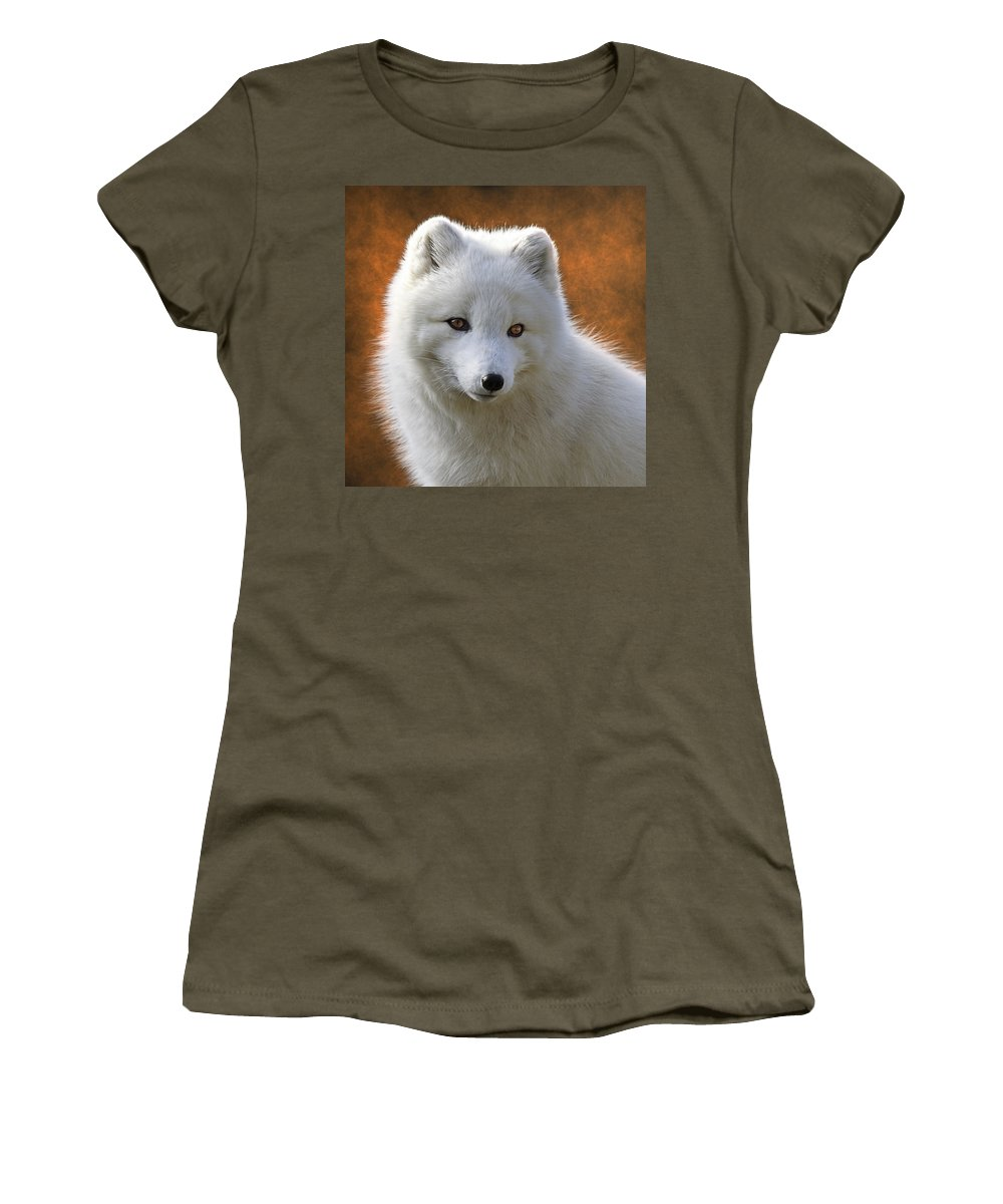 Coy Arctic Fox Women's T-Shirt featuring the photograph Coy Arctic Fox by Wes and Dotty Weber