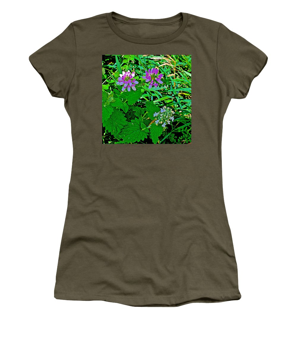 Crown Vetch And Catnip In Pipestone National Monument Women's T-Shirt featuring the photograph Crown Vetch And Catnip In Pipestone National Monument-minnesota by Ruth Hager