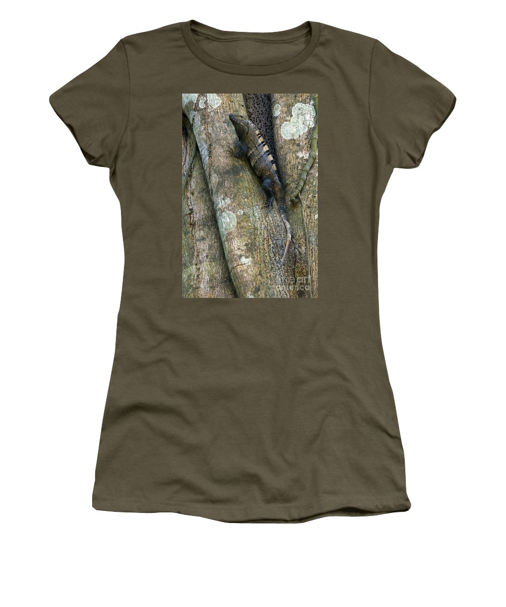 Black Spiny-tailed Iguana Women's T-Shirt featuring the photograph Ctenosaur 3 by Arterra Picture Library