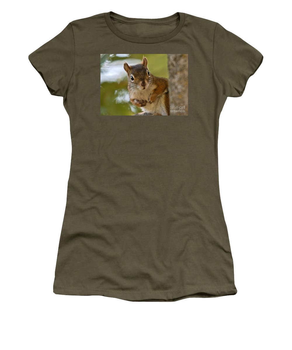 Women's T-Shirt featuring the photograph Curious Squirrel by Cheryl Baxter