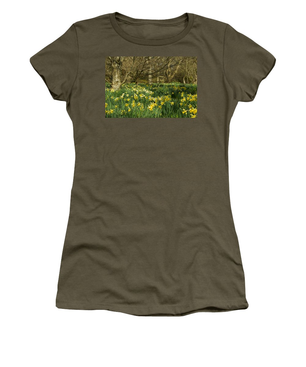 Daffodils Women's T-Shirt featuring the photograph Daffodil Field by Beverly Cash