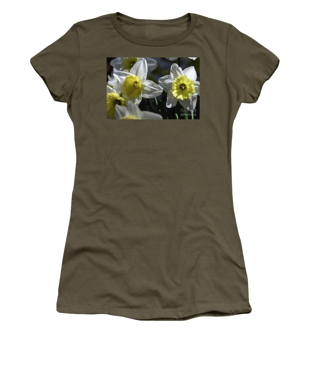 Spring Women's T-Shirt featuring the photograph Daffodils by Elvis Vaughn