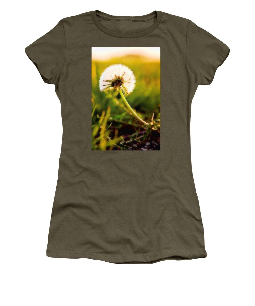 Dandelion Women's T-Shirt featuring the photograph Dandelion Sunset by Sennie Pierson