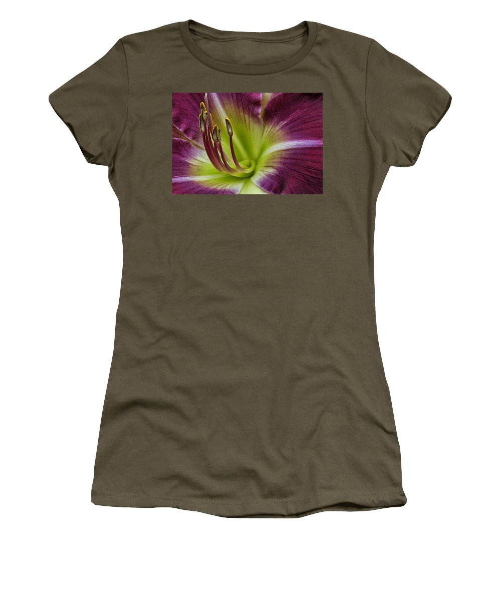 Lily Women's T-Shirt featuring the photograph Day Lily Intimate by Robert Woodward