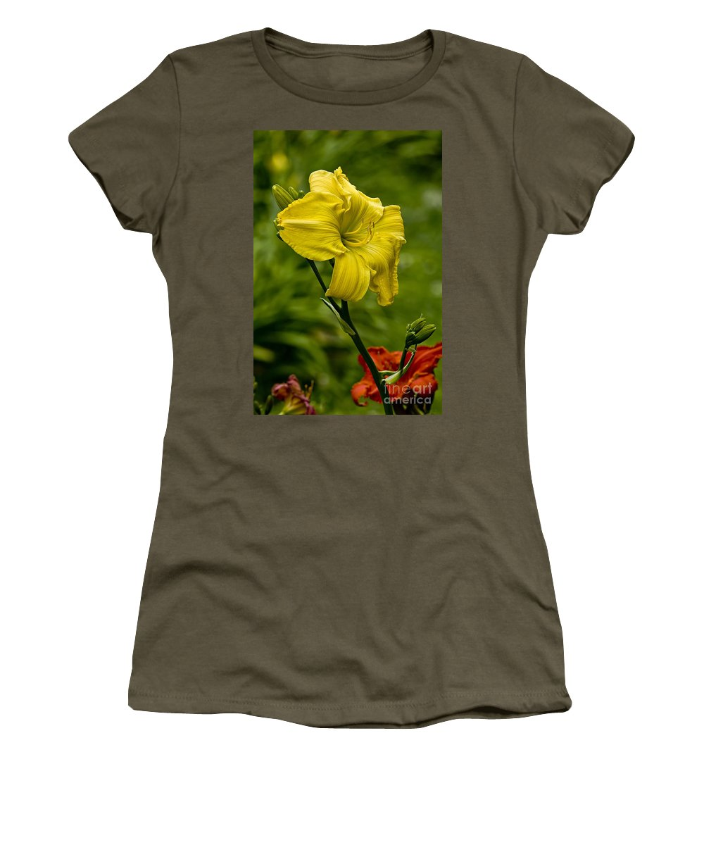 Daylily Women's T-Shirt featuring the photograph Daylily Picture 469 by World Wildlife Photography