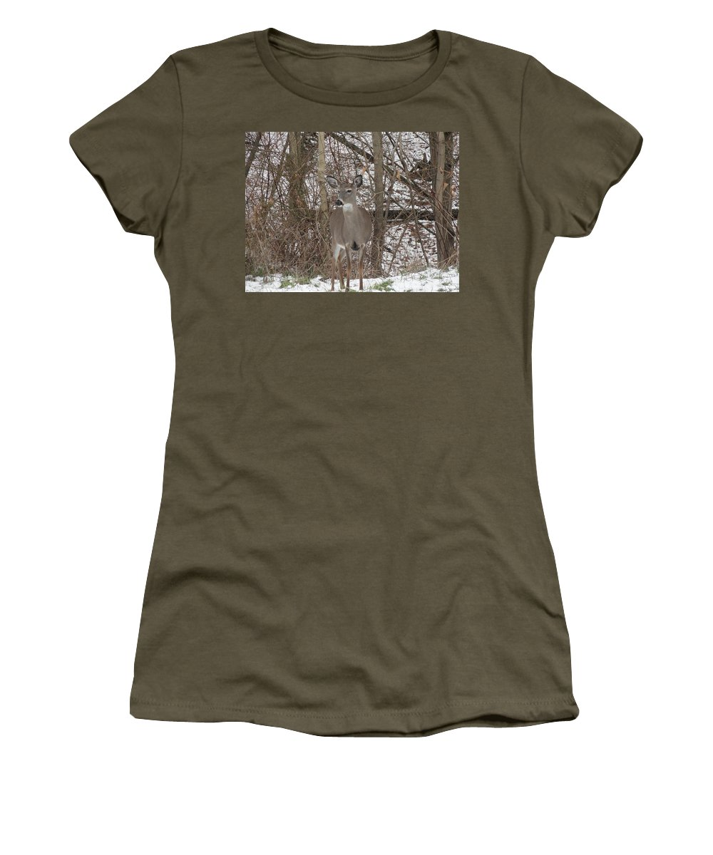 Deer Women's T-Shirt featuring the photograph Deer Of Wonder by Stephanie Irvin