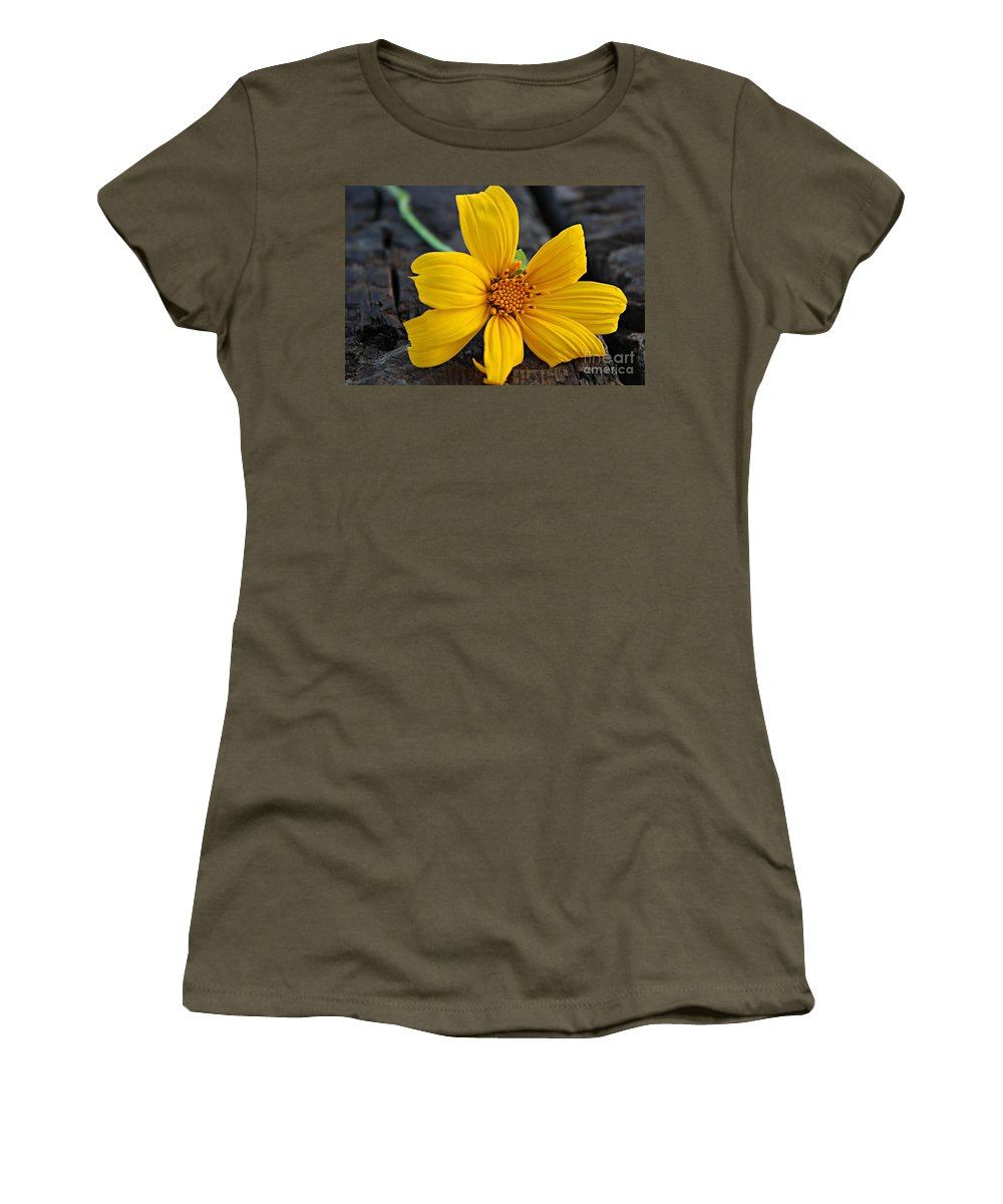 Wild Sunflower Women's T-Shirt (Athletic Fit) featuring the photograph Detail by Clare Bevan